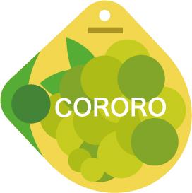 cororo_マスカット